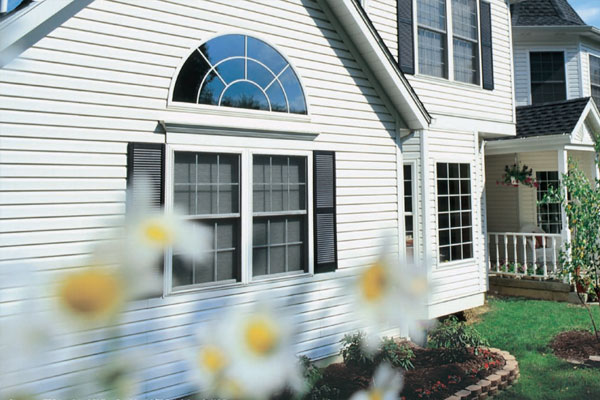 Siding & More Siding & Windows